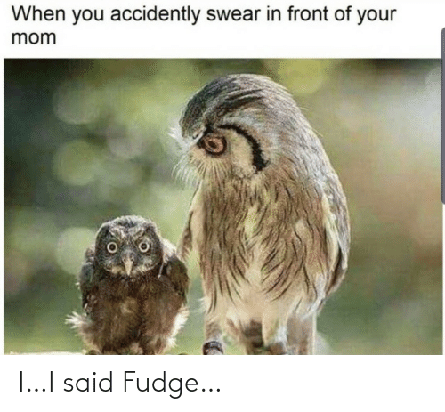 your mom: When you accidently swear in front of your  mom I…I said Fudge…