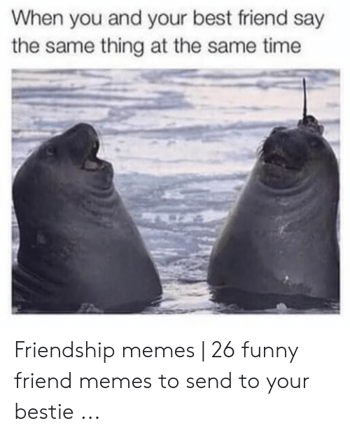 Best Friend, Funny, and Memes: When you and your best friend say  the same thing at the same time Friendship memes   26 funny friend memes to send to your bestie ...