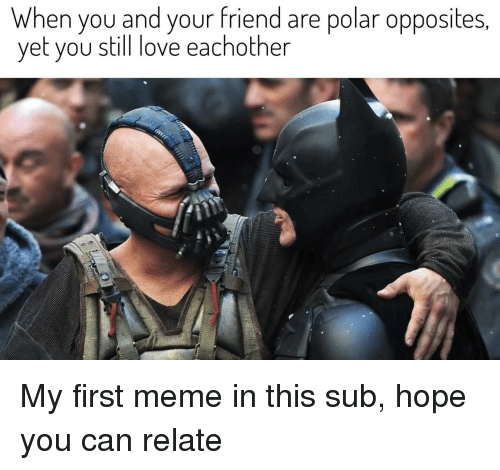 Love, Meme, and Hope: When you and your friend are polar opposites  yet you still love eachother My first meme in this sub, hope you can relate