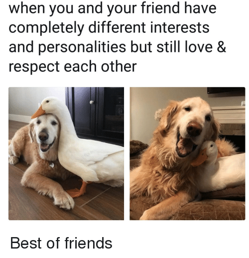 Friends, Love, and Respect: when you and your friend have  completely different interests  and personalities but still love &  respect each other Best of friends