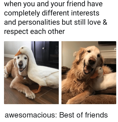 Friends, Love, and Respect: when you and your friend have  completely different interests  and personalities but still love &  respect each other awesomacious:  Best of friends