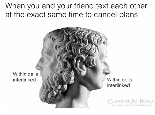 Facebook, Memes, and facebook.com: When you and your friend text each other  at the exact same time to cancel plans  Within cells  interlinked  Within cells  interlinked  CLASSICALART MEMES  facebook.com/classicalartimemes