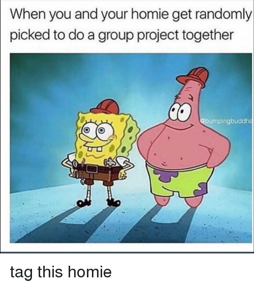 Funny, Homie, and Project: When you and your homie get randomly  picked to do a group project together  @bumpingbuddha tag this homie