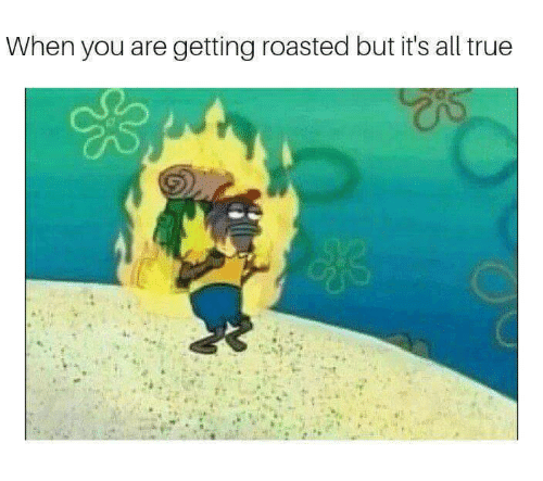 True, All, and You: When you are getting roasted but it's all true