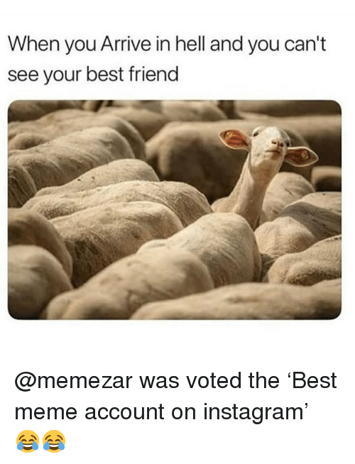Best Friend, Instagram, and Meme: When you Arrive in hell and you can't  see your best friend @memezar was voted the 'Best meme account on instagram' 😂😂