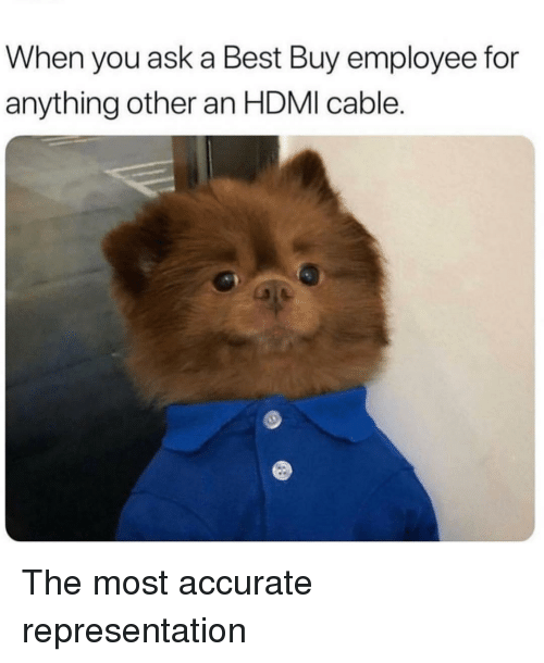 Best Buy, Best, and Accurate Representation: When you ask a Best Buy employee for  anything other an HDMI cable. The most accurate representation