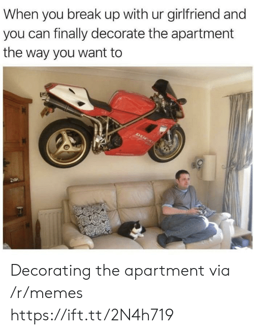 Memes, Break, and Girlfriend: When you break up with ur girlfriend and  you can finally decorate the apartment  the way you want to Decorating the apartment via /r/memes https://ift.tt/2N4h719