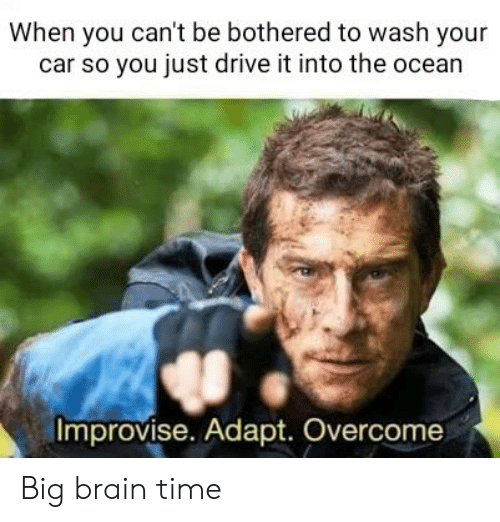Brain, Drive, and Ocean: When you can't be bothered to wash your  car so you just drive it into the ocean  Improvise. Adapt. Overcome Big brain time