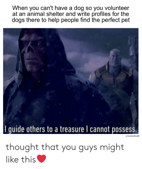 possess: When you can't have a dog so you volunteer  at an animal shelter and write profiles for the  dogs there to help people find the perfect pet  I quide others to a treasure I cannot possess.  u/siveisnotbrad2 thought that you guys might like this❤️