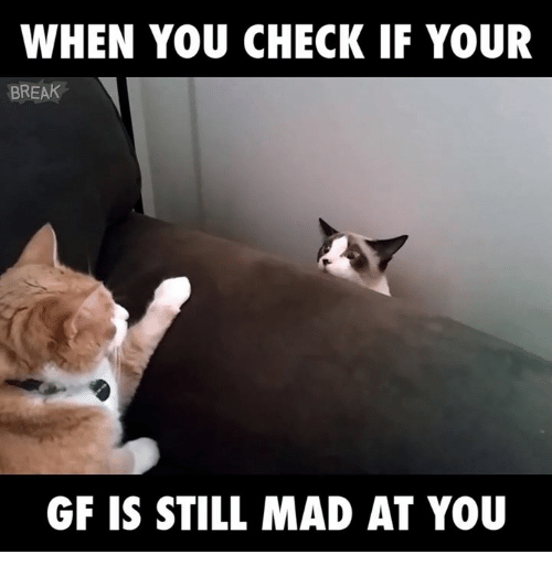 Memes, 🤖, and Madding: WHEN YOU CHECK IF YOUR  BREAK  GF IS STILL MAD AT YOU
