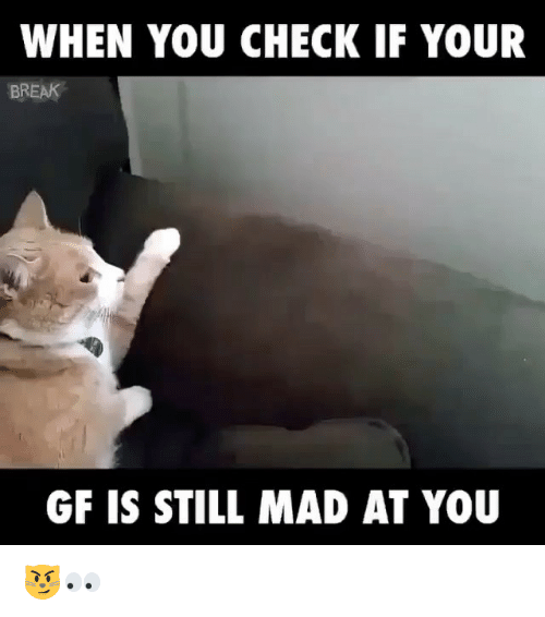 Memes, 🤖, and Madding: WHEN YOU CHECK IF YOUR  BREAK  GF IS STILL MAD AT YOU 😼👀