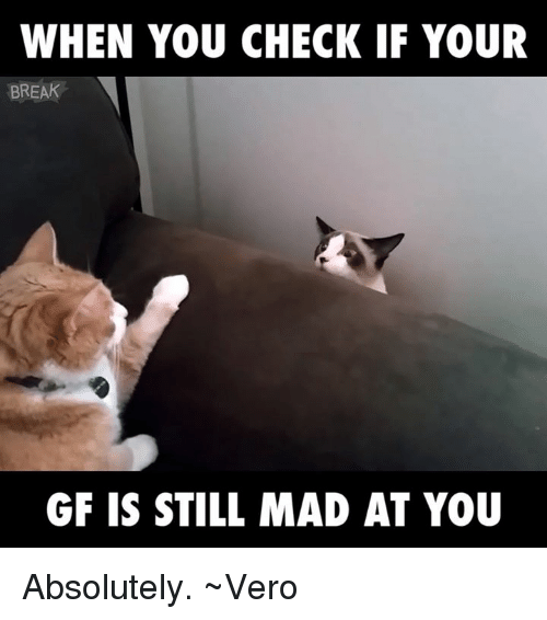 Break, Girl Memes, and Mad: WHEN YOU CHECK IF YOUR  BREAK  GF IS STILL MAD AT YOU Absolutely. ~Vero