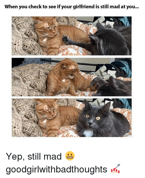 Memes, 🤖, and Madness: When you check to see if your girlfriend is still mad at you... Yep, still mad 😬 goodgirlwithbadthoughts 💅🏻