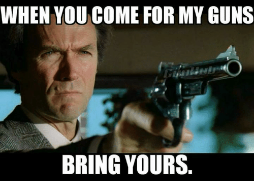 Image result for take my guns meme