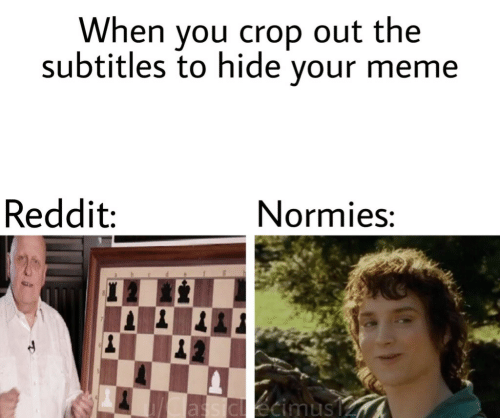 Meme, Reddit, and Hide: When you crop out the  subtitles to hide your meme  Reddit  Normies:  as dl écimus V