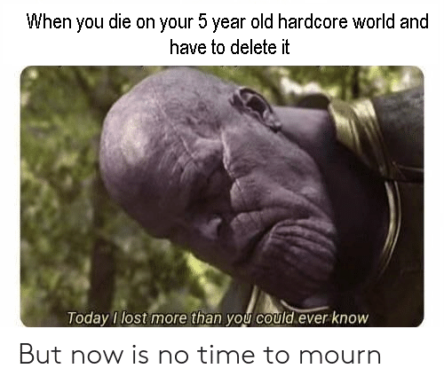 Lost, Time, and World: When you die on your 5 year old hardcore world and  have to delete it  oday lost more than you could ever know But now is no time to mourn