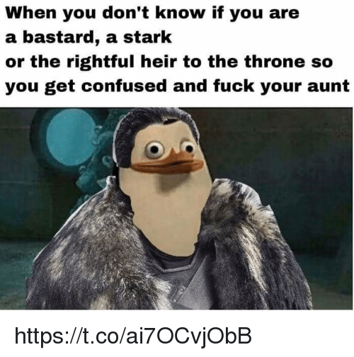 Bastardization: When you don't know if you are  a bastard, a stark  or the rightful heir to the throne so  you get confused and fuck your aunt https://t.co/ai7OCvjObB
