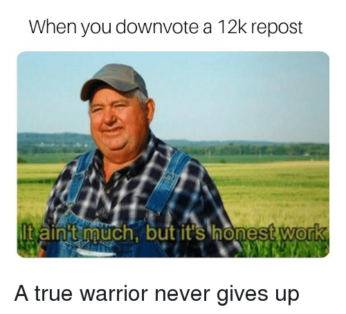 True, Work, and Never: When you downvote a 12k repost  It ainit uch, but it's honest Work A true warrior never gives up