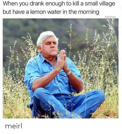drank: When you drank enough to kill a small village  but have a lemon water in the morning  drgrayfang meirl