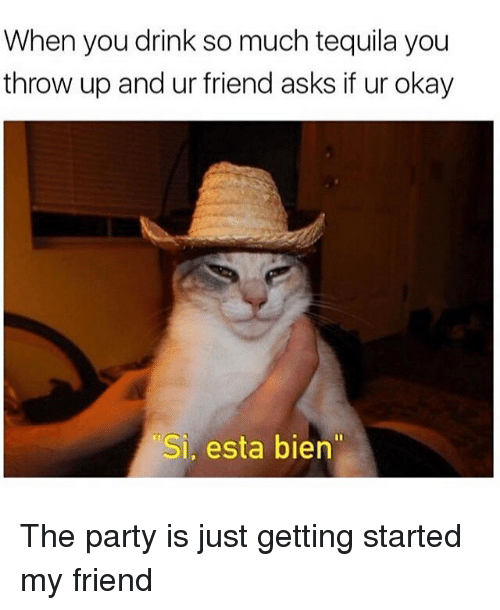 """just getting started: When you drink so much tequila you  throw up and ur friend asks if ur okay  Si, esta bien"""" The party is just getting started my friend"""