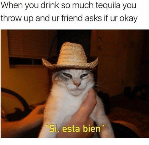 Okay, Tequila, and Throw Up: When you drink so much tequila you  throw up and ur friend asks if ur okay  Si, esta bien