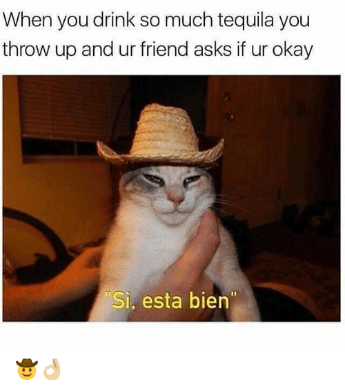 "Okay, Tequila, and Dank Memes: When you drink so much tequila you  throw up and ur friend asks if ur okay  Si, esta bien"" 🤠👌🏼"