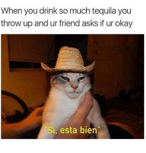 Okay, Tequila, and Humans of Tumblr: When you drink so much tequila you  throw up and ur friend asks if ur okay  Si, esta bien