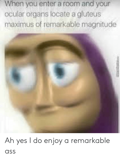 Maximus: When you enter a room and your  ocular organs locate a gluteus  maximus of remarkable magnitude Ah yes I do enjoy a remarkable ass