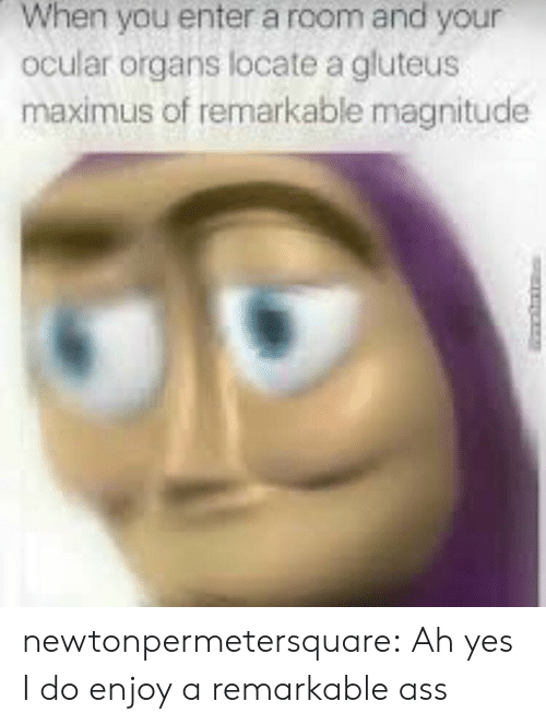 Maximus: When you enter a room and your  ocular organs locate a gluteus  maximus of remarkable magnitude newtonpermetersquare:  Ah yes I do enjoy a remarkable ass