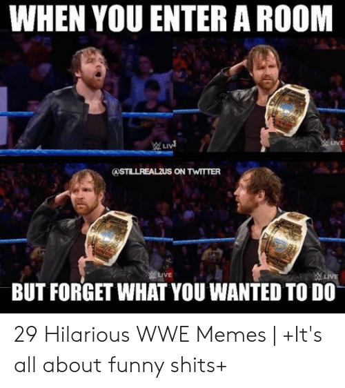 Funny, Memes, and World Wrestling Entertainment: WHEN YOU ENTER A ROOM  LIVE  BUT FORGET WHAT YOU WANTED TO DO 29 Hilarious WWE Memes | +It's all about funny shits+