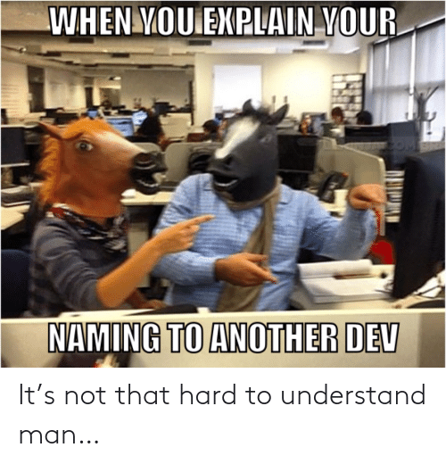 explain: WHEN YOU EXPLAIN YOUR  NAMING TO ANOTHER DEV It's not that hard to understand man…