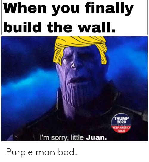America, Bad, and Sorry: When you finally  build the wall.  TRUMP  2020  KEEP AMERICA  GREAT  I'm sorry, little Juan. Purple man bad.