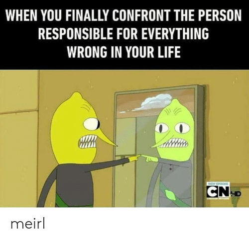 Life, MeIRL, and You: WHEN YOU FINALLY CONFRONT THE PERSON  RESPONSIBLE FOR EVERYTHING  WRONG IN YOUR LIFE  CND meirl