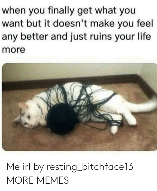 Ruins: when you finally get what you  want but it doesn't make you feel  any better and just ruins your life  more Me irl by resting_bitchface13 MORE MEMES