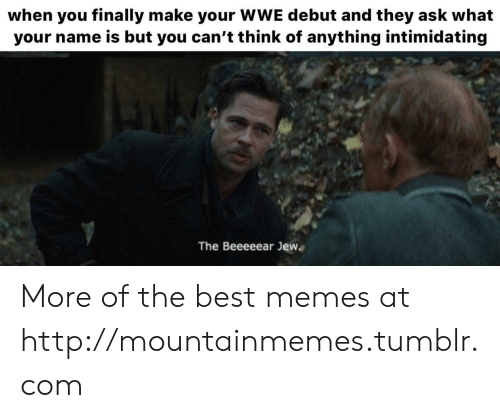 World Wrestling Entertainment: when you finally make your WWE debut and they ask what  your name is but you can't think of anything intimidating  The Beeeeear Jew More of the best memes at http://mountainmemes.tumblr.com