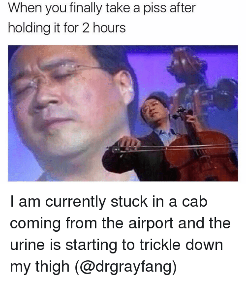 Urin: When you finally take a piss after  holding it for 2 hours I am currently stuck in a cab coming from the airport and the urine is starting to trickle down my thigh (@drgrayfang)
