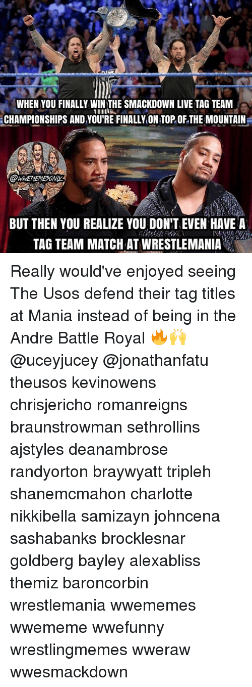 tag team: WHEN YOU FINALLY WIN THE SMACKDOWN LIVE TAG TEAM  CHAMPIONSHIPS AND YOU'RE FINALLY ONTOP OF THE MOUNTAIN  BUT THEN YOU REALIZE YOU DON'T EVEN HAVE A  TAG TEAMMATCHAT WRESTLEMANIA Really would've enjoyed seeing The Usos defend their tag titles at Mania instead of being in the Andre Battle Royal 🔥🙌 @uceyjucey @jonathanfatu theusos kevinowens chrisjericho romanreigns braunstrowman sethrollins ajstyles deanambrose randyorton braywyatt tripleh shanemcmahon charlotte nikkibella samizayn johncena sashabanks brocklesnar goldberg bayley alexabliss themiz baroncorbin wrestlemania wwememes wwememe wwefunny wrestlingmemes wweraw wwesmackdown