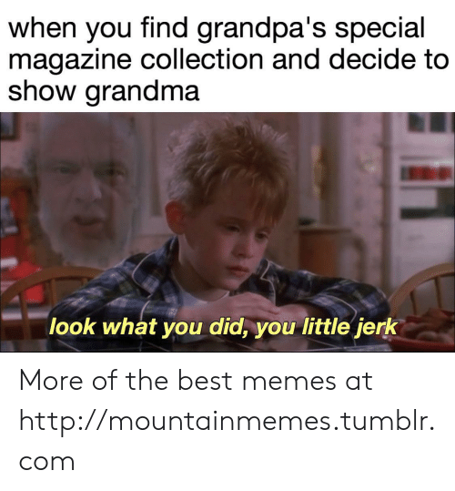 jerk: when you find grandpa's special  magazine collection and decide to  show grandma  look what you did, you little jerk More of the best memes at http://mountainmemes.tumblr.com