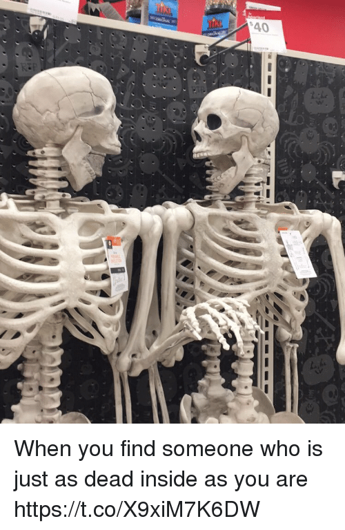 Girl Memes, Who, and You: When you find someone who is just as dead inside as you are https://t.co/X9xiM7K6DW