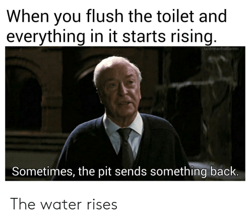 It Starts: When you flush the toilet and  everything in it starts rising  u/drmanhattannn  Sometimes, the pit sends something back. The water rises