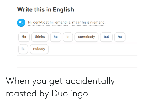 roasted: When you get accidentally roasted by Duolingo