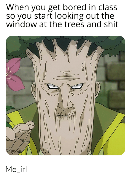 Bored, Shit, and Trees: When you get bored in class  so you start looking out the  window at the trees and shit Me_irl