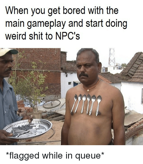 Bored, Shit, and Weird: When you get bored with the  main gameplay and start doing  weird shit to NPC's *flagged while in queue*