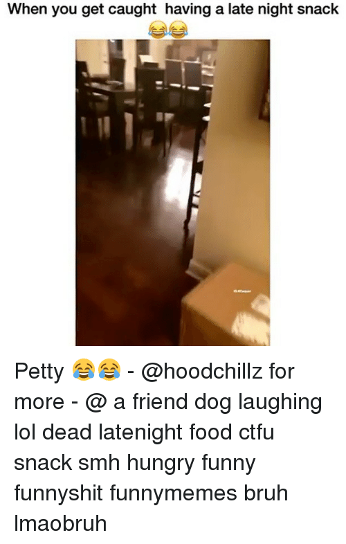 Dog Laughing: When you get caught having a late night snack Petty 😂😂 - @hoodchillz for more - @ a friend dog laughing lol dead latenight food ctfu snack smh hungry funny funnyshit funnymemes bruh lmaobruh