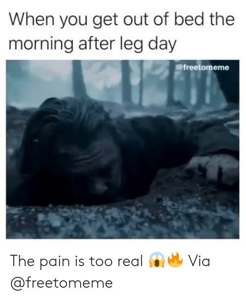 Leg Day, Pain, and After Leg Day: When you get out of bed the  morning after leg day  @freetomeme The pain is too real 😱🔥 Via @freetomeme