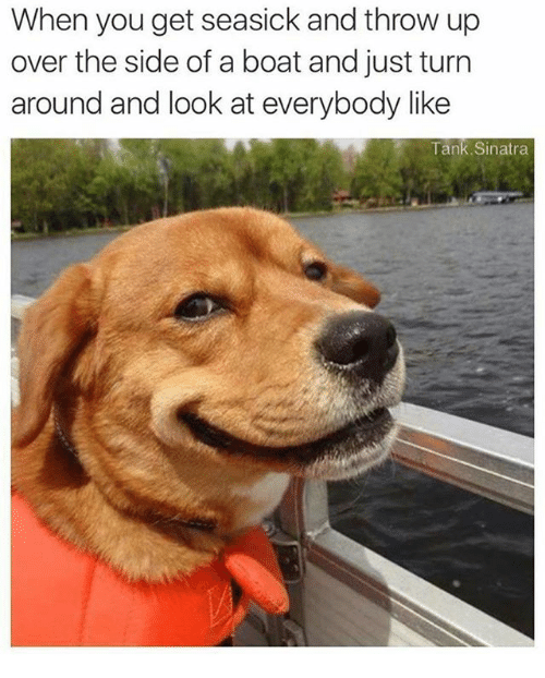 Memes, Throw Up, and Boat: When you get seasick and throw up  over the side of a boat and just turn  around and look at everybody like  Tank.Sinatra