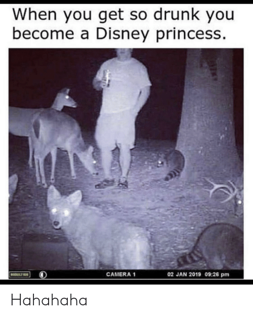 So Drunk: When you get so drunk you  become a Disney princess  02 JAN 2019 09:26 pm  CAMERA 1  MOULTRIE Hahahaha
