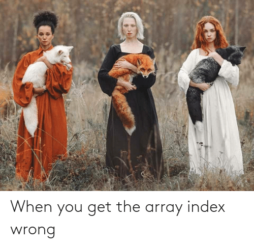 index: When you get the array index wrong