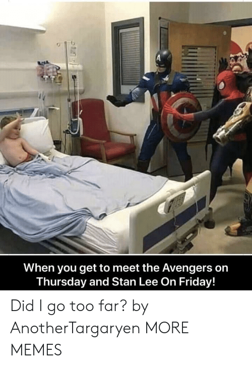 Meet The: When you get to meet the Avengers on  Thursday and Stan Lee On Friday! Did I go too far? by AnotherTargaryen MORE MEMES