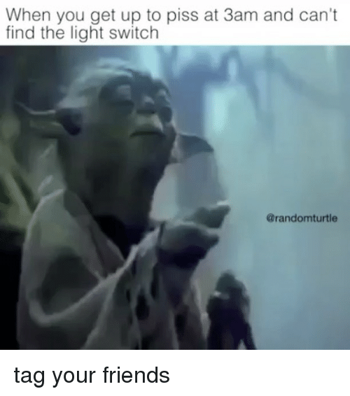 light switch: When you get up to piss at 3am and can't  find the light switch  @randomturtle tag your friends